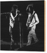 Aerosmith In Spokane 29a Wood Print