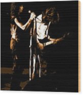 Aerosmith In Spokane 31b Wood Print