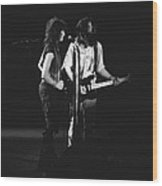 Aerosmith In Spokane 32 Wood Print