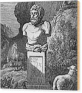 Aesop, Ancient Greek Fabulist Wood Print by