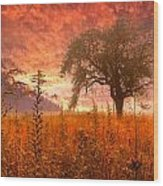 Aflame Wood Print by Debra and Dave Vanderlaan