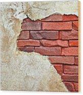 Africa In Bricks Wood Print