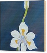African Lily Wood Print