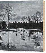 Den Haag After The Rain Wood Print