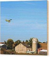 Afternoon Flight Wood Print