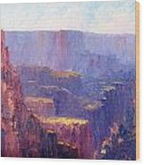 Afternoon In The Canyon Wood Print