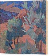 Afternoon Light - Santa Rosa Mountains Wood Print