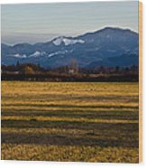 Afternoon Shadows Across A Rogue Valley Farm Wood Print
