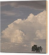 Afternoon Thunderstorm Building East Boulder County Co Plains Wood Print
