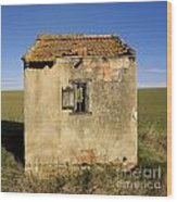 Aged Hut In Auvergne. France Wood Print by Bernard Jaubert