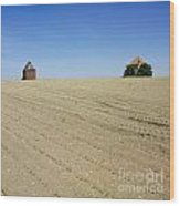 Agricultural Landscape. Limagne. France Wood Print