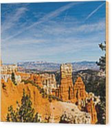 Agua Canyon 5 Wood Print