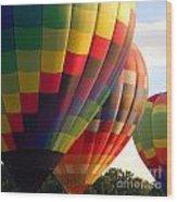 Air Balloon Last Call Wood Print