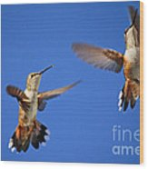 Air Dance Wood Print