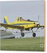 Air Plane  Wood Print