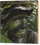 Airman Conceals Himself By Blending Wood Print by Stocktrek Images