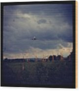 Airport Approach Wood Print