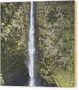 Akaka Falls Iv Wood Print