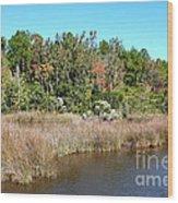 Alabama Bayou In Autumn Wood Print