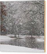 Alabama Winter Wonderland Wood Print
