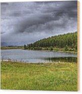 Alaki Lake Near Eureka Wood Print