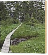 Alaska Meadow Trail Wood Print
