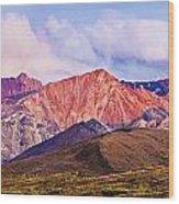 Alaska Range And Fall Colours Wood Print