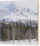 Alaska Range Peak Wood Print