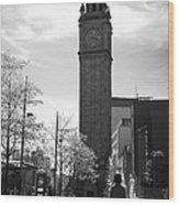 Albert Clock Belfast Wood Print