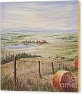 Alberta Foothills Wood Print