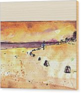 Albufera De Valencia 09 Wood Print
