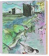 Albufera De Valencia 14 Wood Print