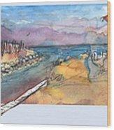 Albufera De Valencia 15 Wood Print