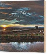 Albufera Rice. Valencia. Spain Wood Print