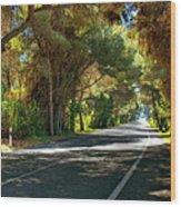 Albufera Road To El Palmar. Valencia. Spain Wood Print
