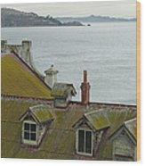 Alcatraz View Wood Print by Suzanne Gaff