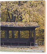 Alcove In The Autumn Park Wood Print