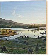 Alder Lake Wa At Sunset Wood Print
