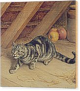 Alert Wood Print