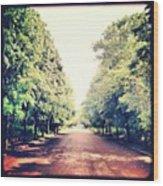 #alexandrapalace #alexandrapark #park Wood Print