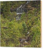 Alger Falls 1 Wood Print