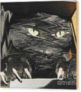 Alice's Cat Wood Print by Rebecca Margraf