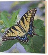 Alight Wood Print