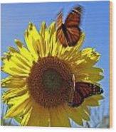 All A Flutter Wood Print