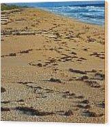 All Beach Wood Print