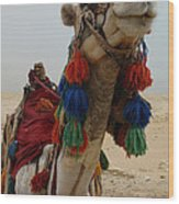 Camel Fashion Wood Print
