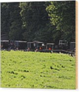 All The Amish Buggies Wood Print
