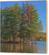 Allegheny 13723 Wood Print
