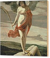 Allegory Of Victory Wood Print