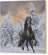 Allegro Coming Home Wood Print